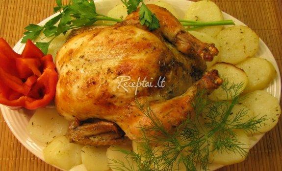 Viščiukas folijoje