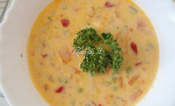 Lydyto sūrelio sriuba su daržovėmis